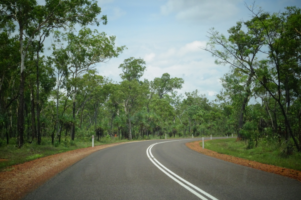 On the road nel Litchfield National Park.