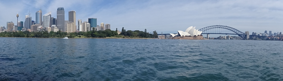 Il centro di Sydney, l'Opera House, l'Harbour Bridge e la baia Farm Cove visti dal Mrs.Macquarie's Point.